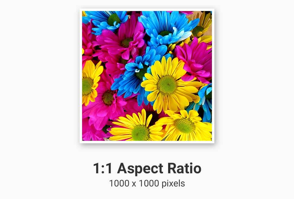 1:1 Aspect Ratio